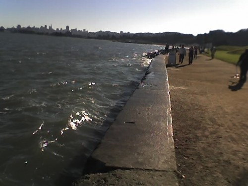 Looking back at the city from Crissy Field