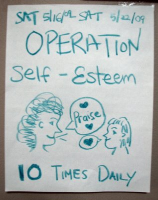 operation self-esteem